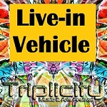 Triplicity Music & Arts Festival 2019:Space Ship Pass (Live In Vehicle Pass)